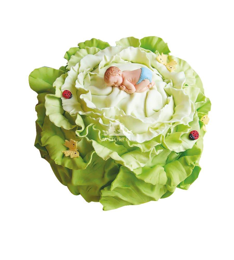 Торты капуста с младенцем
